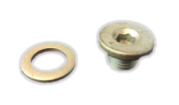 307551 OMC Johnson / Evinrude Allen Type Oil Drain Plug w Washer