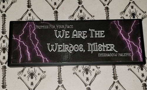 We Are The Weirdos, Mister Palette