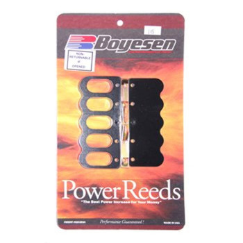 Johnson/Evinrude V4 120HP Boyesen Reed Kit