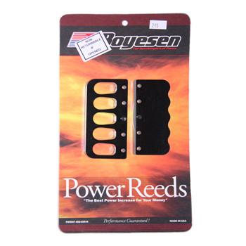 Reed Kit, Boyesen B245