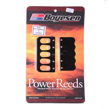 Reed Kit, Boyesen B255