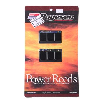 Reed Kit, Boyesen BT23P