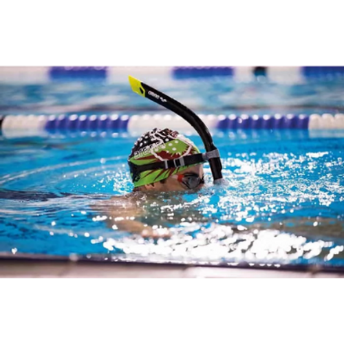 Snorkelling - Pool