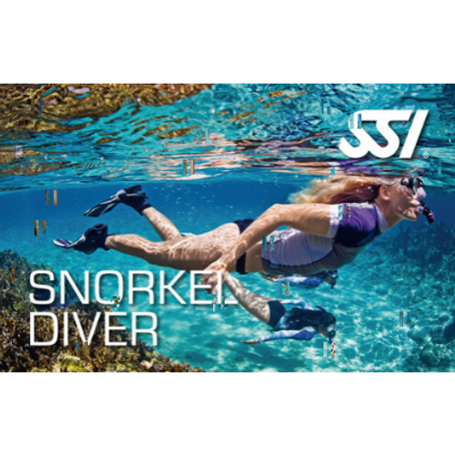 Snorkelling - Ocean