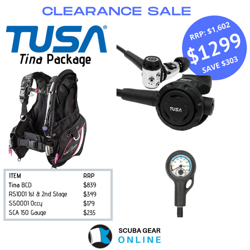Tina RS1001 Package