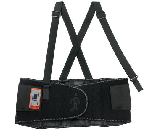 Ergodyne 100 ProFlex Economy Black Back Support. Available in different sizes. Shop now!
