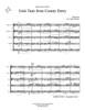 Irish Tune from County Derry Brass Quintet (Trad./arr. Haynor)
