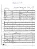 Medieval Suite (Trad./ arr. Kompanek)