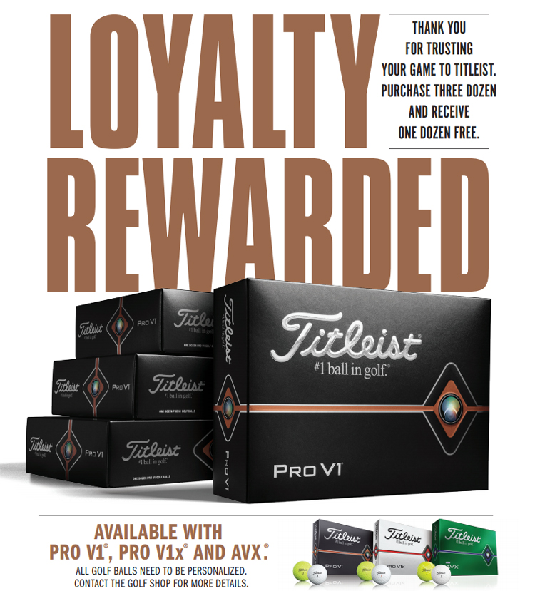 ttilesit-loyalty-rewarded-2020-product-page-image.jpg