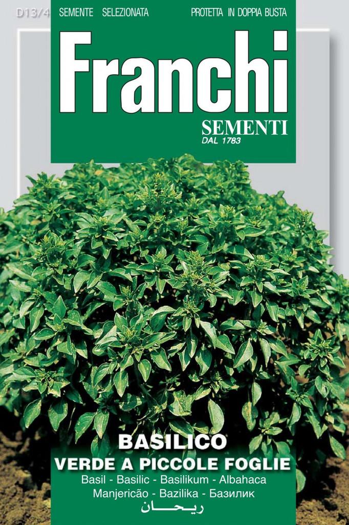 Basil Verde Piccole Foglie (13-4)