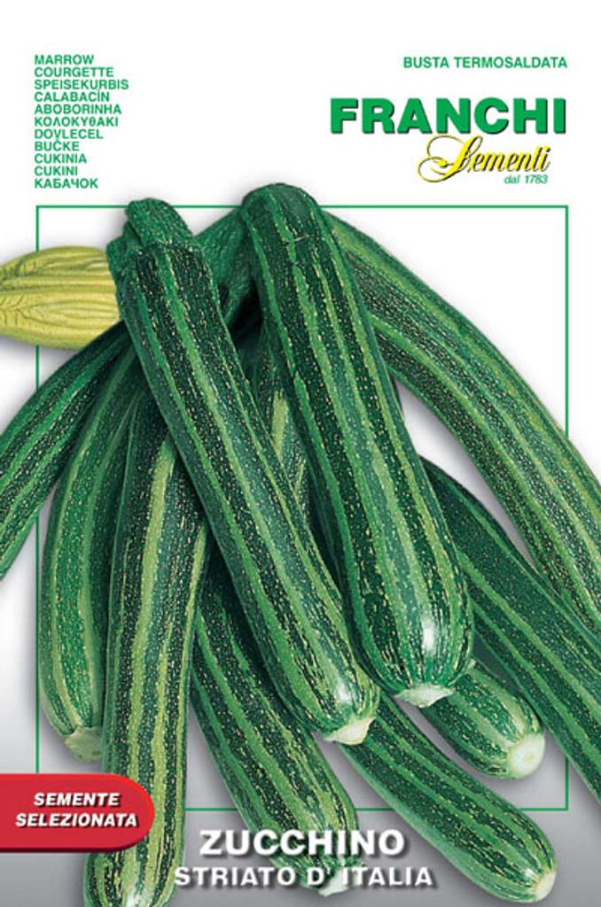 Zucchini Striato d'Italia (146-2)