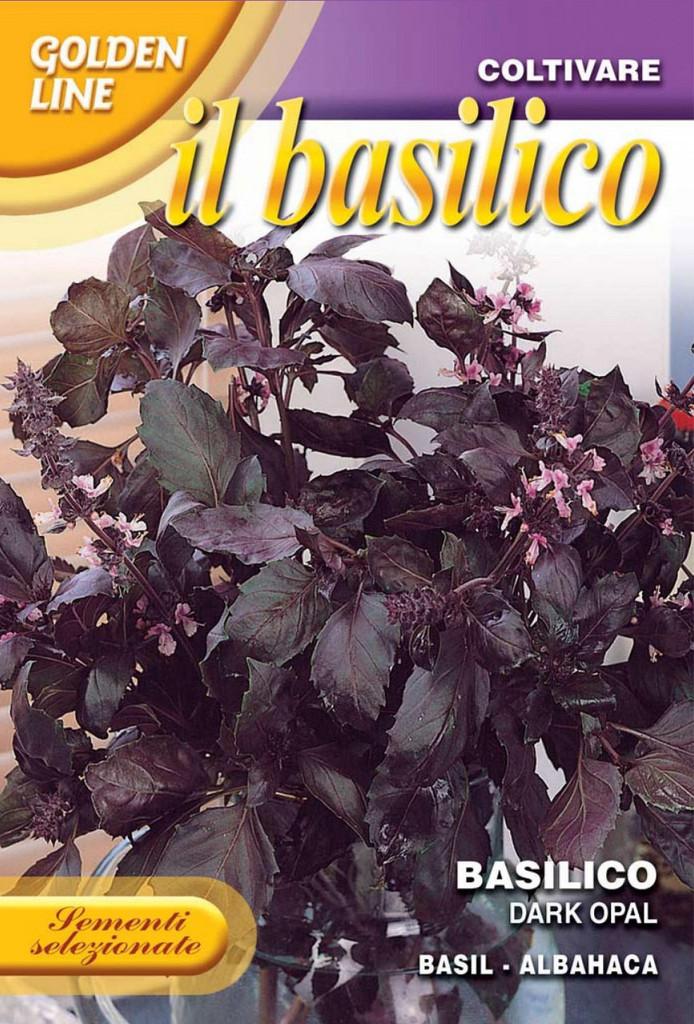 Basil Violetto Aromatico / Dark Opal (13-5)