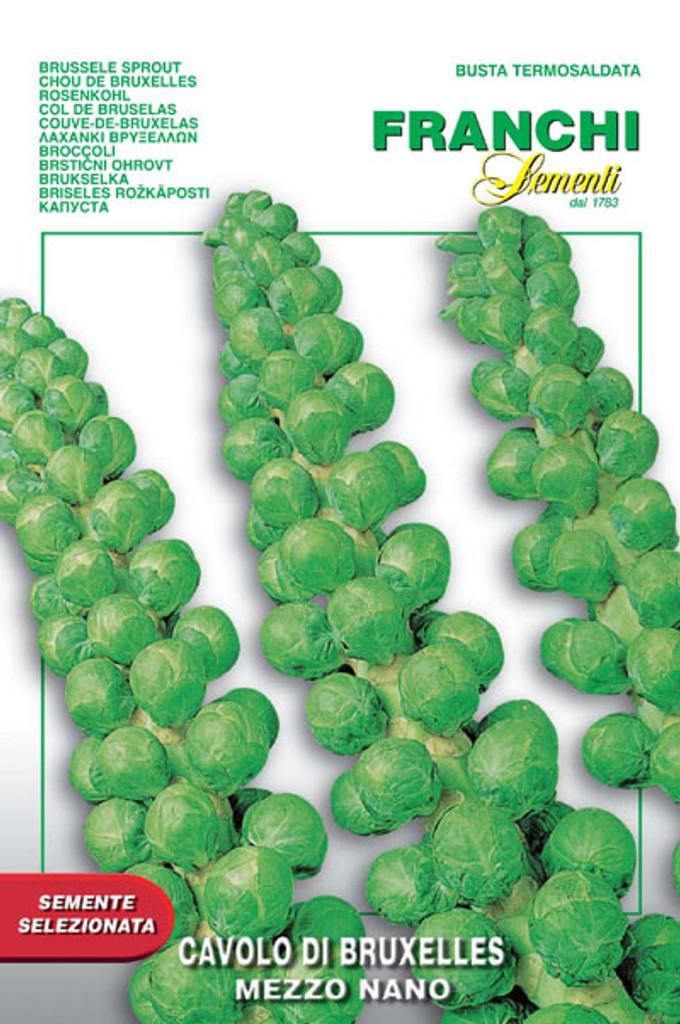 Brussels Sprouts Mezzo Nano (24-2)