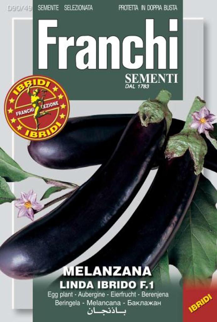 Eggplant  Linda/Spany (90-49)