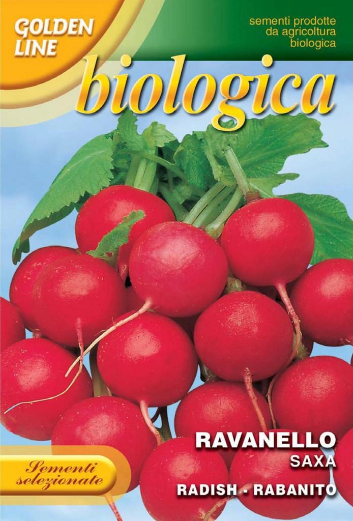 Radish Saxa 2 - Certified Organic (112-11B)