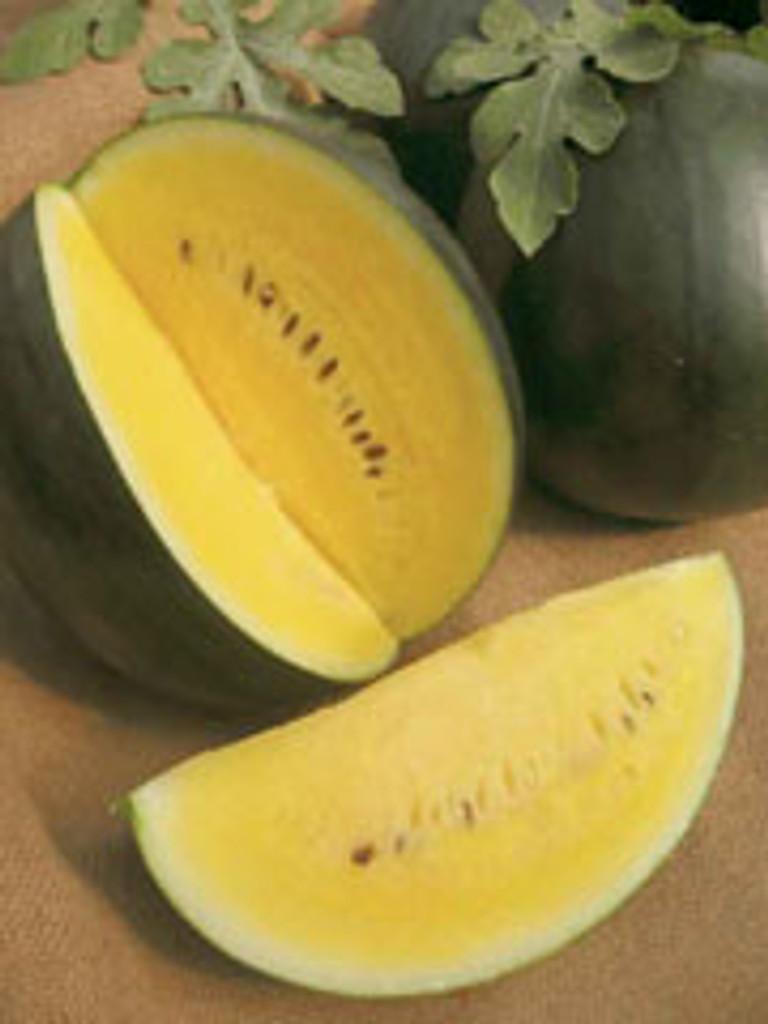 Watermelon - Janosik (3-32)