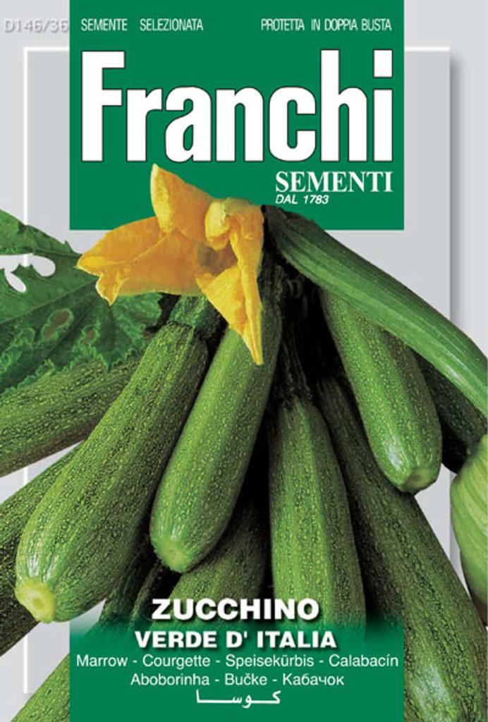 Zucchini Verde d'Italia (146-36)