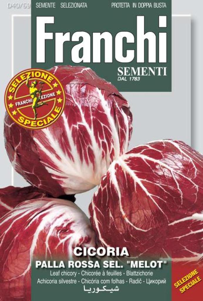 Chicory Palla Rossa 5 Sel. Melot (40-69)