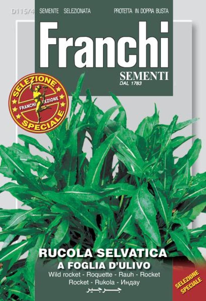 Arugula Olive Leaf Franchi (DBOS 115-4)