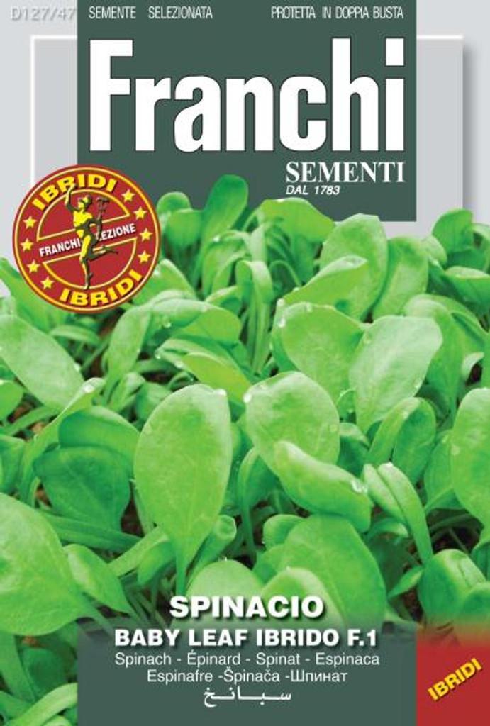 Spinach Hybrid Baby Leaf (127-47)