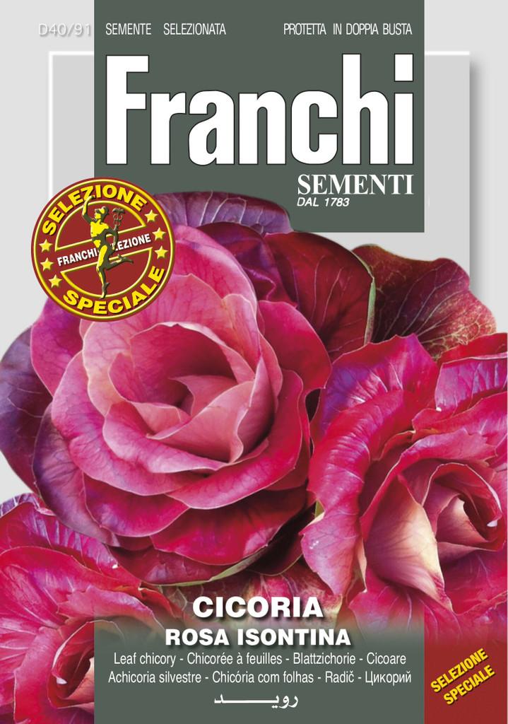 Chicory Rosa Isontina (40-91)