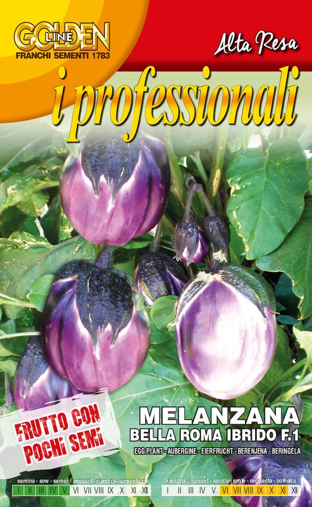 Eggplant Bella Roma Ibrido F1 (90-51)