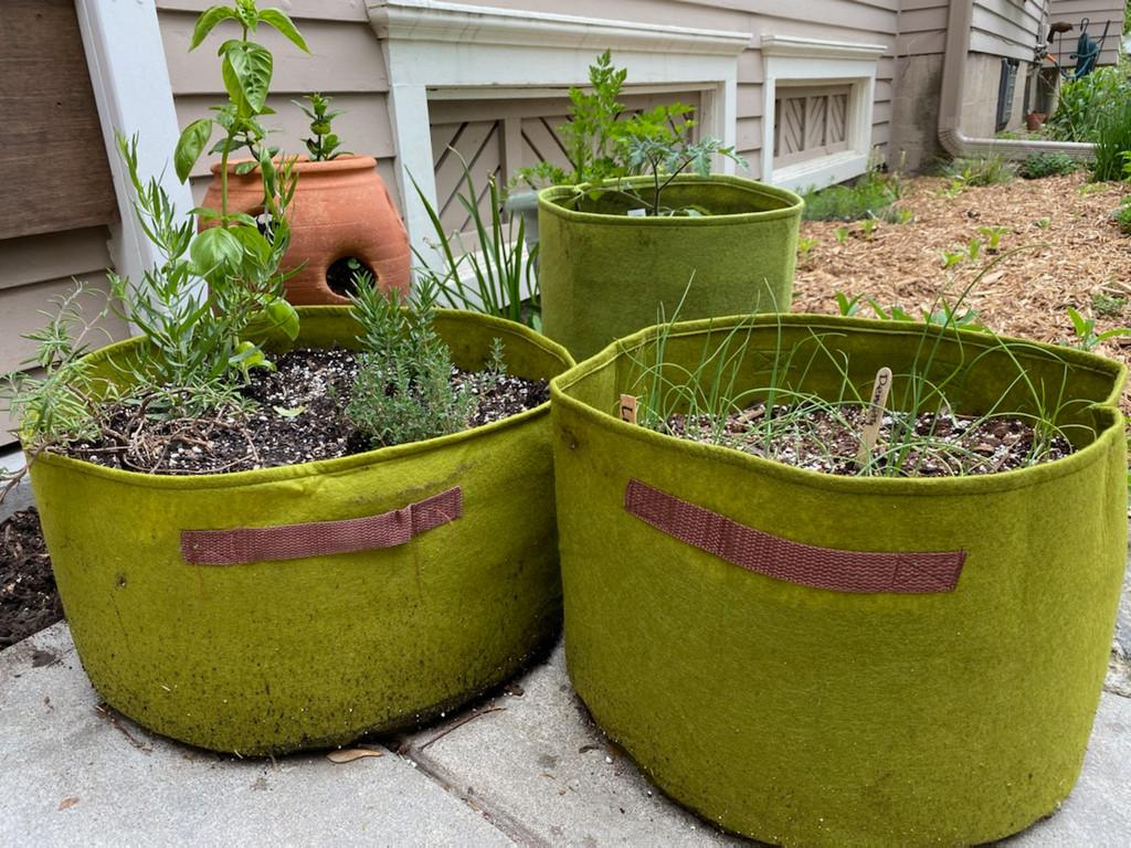 Vigoroot Herb Patio Planter