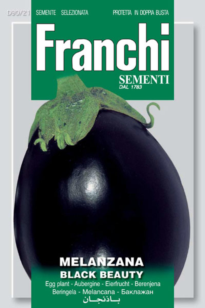 Eggplant Black Beauty Ibrido F1 (90-21)
