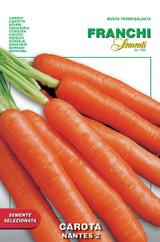 Carrot Nantes di Chioggia 2 (23-7)