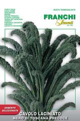 Kale Cavolo Nero aka Lacinato (35-7)