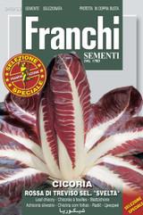 Radicchio Rossa Treviso sel Svelta (40-53)