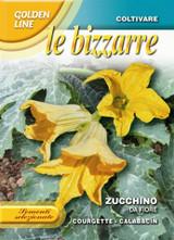 Zucchino da Fiore / San Pasquale - Edible Flower (146-57)