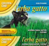 Cat Grass/Erba Gatto (54-13)