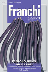 Bush Bean Nano Purple King (59-77)