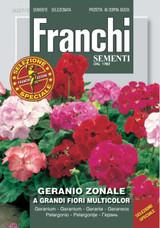 Geranium Zonale (327-2)