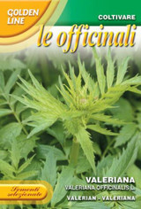 Valerian / Valeriana Officinalis (140-50)