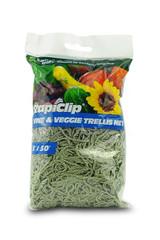 Trellis Net