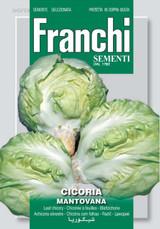 Chicory Mantovana (40-29)