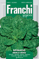 Spinach Merlo Nero (127-20)