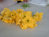 Lunga di Napoli flowers.  Cathy says it is like eating a steak.