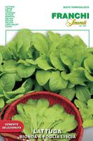Lettuce Bionda a Foglia Liscia - Cut & Come Again (78-4)