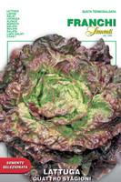 Lettuce Quattro Stagioni (79-5)