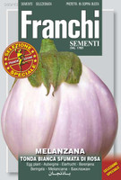 Eggplant Tonda Bianca Sfumata di Rosa (90-43)
