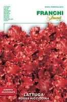 Lettuce Rossa Ricciolina (78-27)