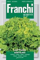 Lettuce Gentilina (78-28)