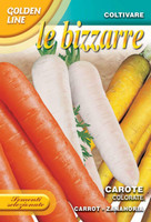 Carrot - Colorate (23-42)
