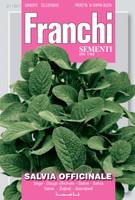 Sage/Salvia Officinale (119-1)