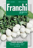 Radish Tondo Bianco (112-2)