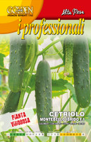 Cucumber Montebello F1 (37-42)