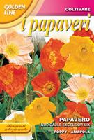 Icelandic Poppy 'Excelsior' (341-7)